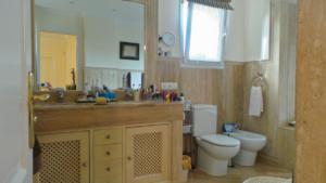 baño ppal 2